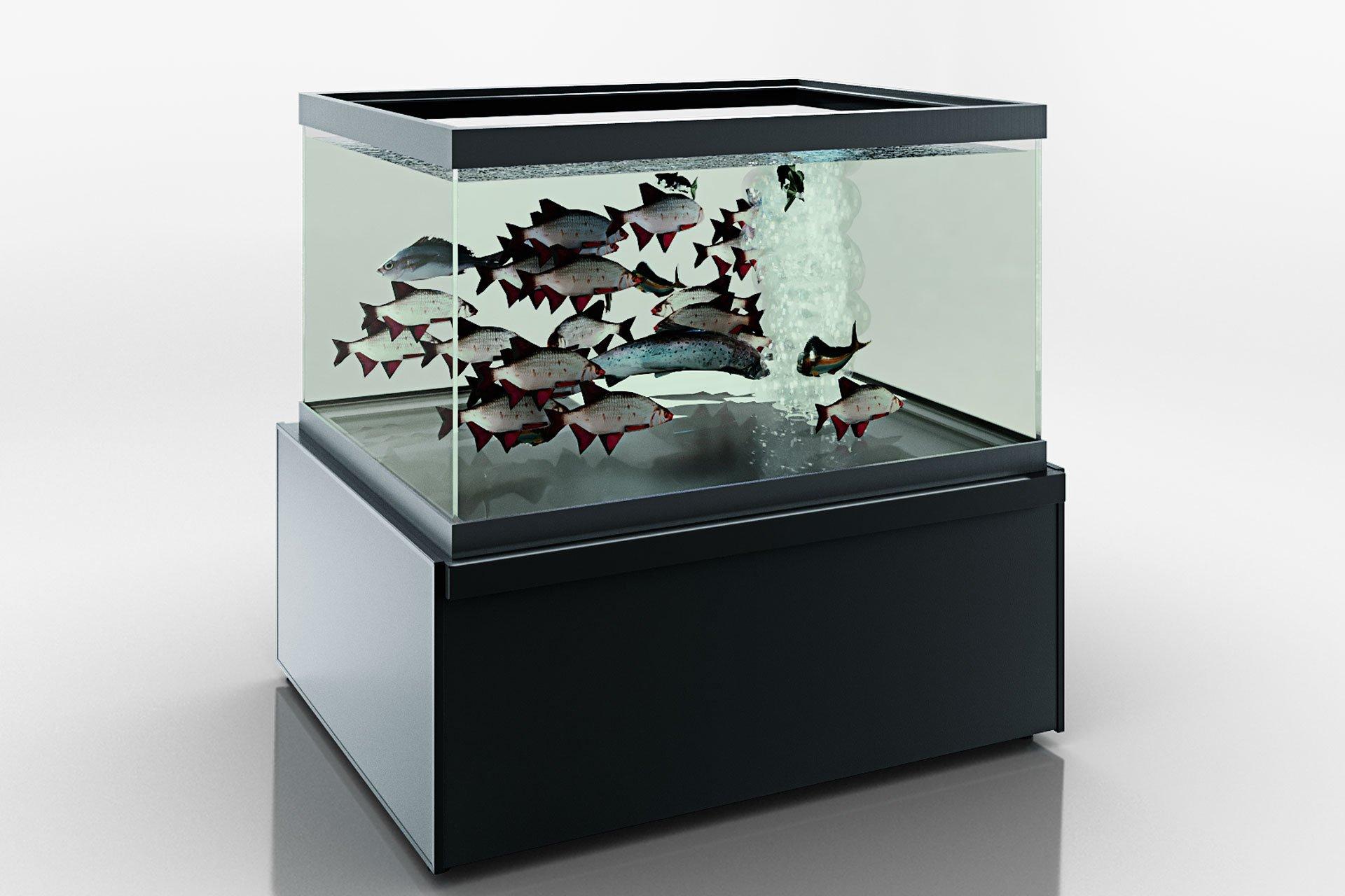 Kühlvitrinen Missouri NС 120 aquarium 060